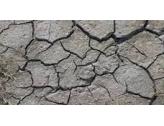 Impact sécheresse sur habitation
