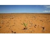 IMPORTANT : arrêté catastrophe naturelle (sécheresse)