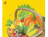 Vente de fruits et légumes ...