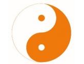 Info Qi Gong, Meditation